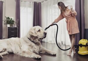 I s domácím mazlíčkem se dá žít v čistém bytě