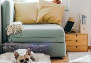 Jak změnil virus hypotéky? Méně regulace, více obtíží